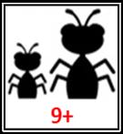 PLYT NumBugz Age 9+